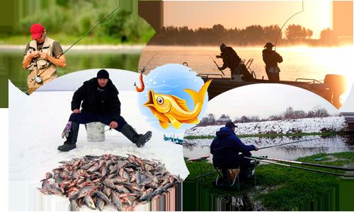 Черви как наживка для рыбалки