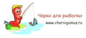 Красные черви для рыбалки