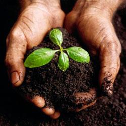Обогащение почвы кислородом