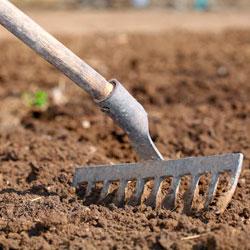 Удобрение неплодородных почв
